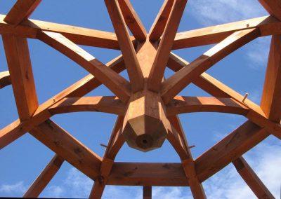 octagon6max